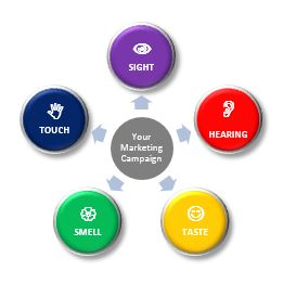 Marketing Sense, the 5 senses of marketing, sense marketing, how to make marketing better.